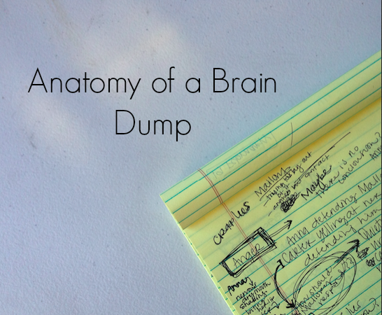 Anatomy of a Brain Dump